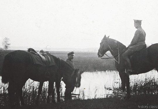 1. Weltkrieg Deutsches Heer - Armeepferde - Offizierspferde