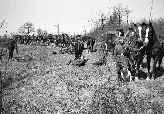 Wehrmacht Heer Armeepferde Pferdegespanne - Versorgung / Transport - Frankreich