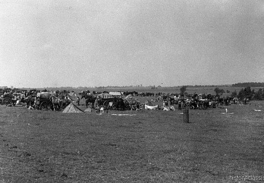 Wehrmacht Heer Armeepferde Pferdegespanne - Versorgung / Transport