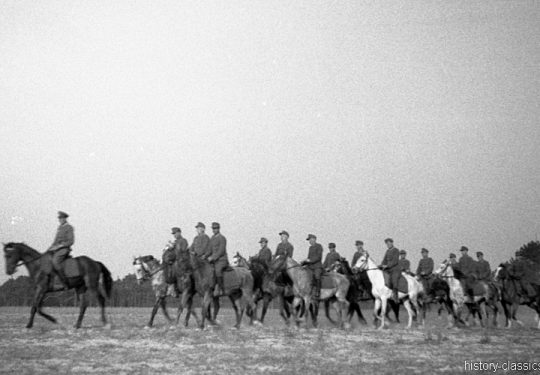 Wehrmacht Heer Armeepferde Reitpferde / Offizierspferde - Frankreich 1944