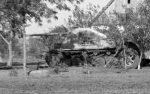 Wehrmacht Heer Panzerjäger Marder II
