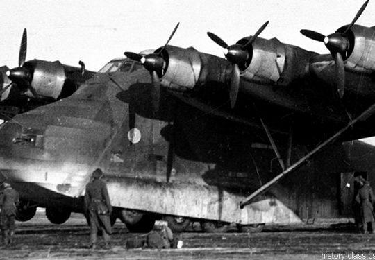 Wehrmacht Luftwaffe Messerschmitt Me 323 D-1 Gigant